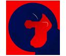 OT גלובל ייבוא ושיווק מסין // TOP WEBמשרד פרסום